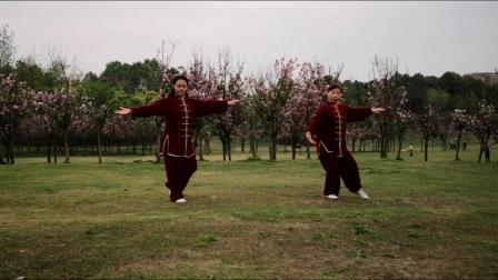 张三丰道家养生太极拳36式