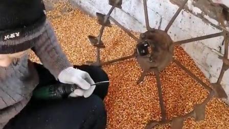 自己想到的 打玉米办法怎么样