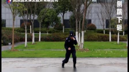 国安安保教学视频之擒敌拳:13擒敌拳-侧踹下砸