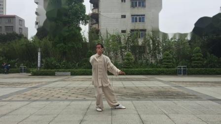 杨氏太极拳精要套路