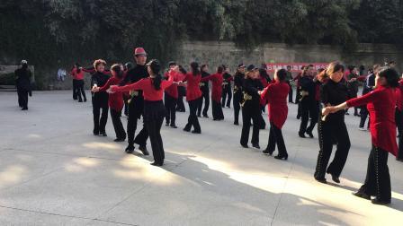兵兵三步踩 张玉龙舞团演示4月5日
