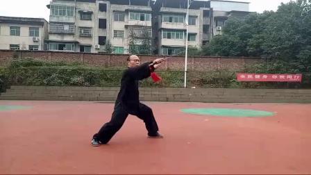刘林老师陈式剑