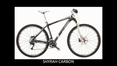 老牌赛车意大利自行车品牌FRW辐轮王单车