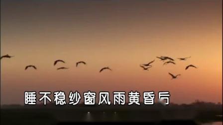 《红豆曲》龚玥  fybxzk