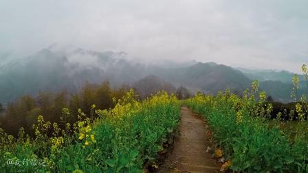这个不起眼的村子,因藏匿在油菜花海和云海雾海中而出名