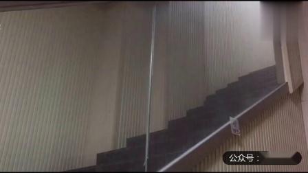 幽默搞笑猫咪视频第两千零三十八期
