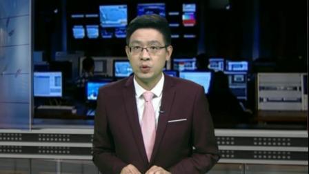 武汉教育电视台:武汉生物工程学院学生将教学楼顶变花园