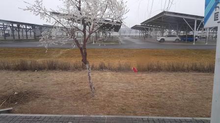 沈阳160路公交车~宝马工业园