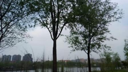 太和县三桥风景区,真的很好看哦!