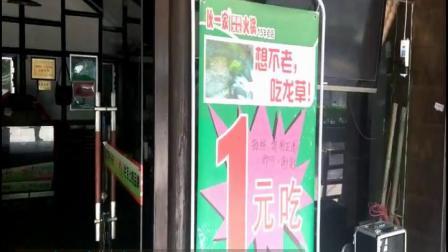 四角龙现身重庆伙一家火锅店门口