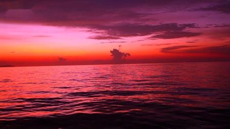 2019.04泰国斯米兰船宿潜水之旅