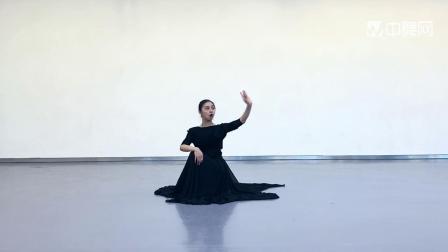 成人古典舞别古君视频分解介绍,阜阳艺路舞蹈提供,仅供内部学员学员