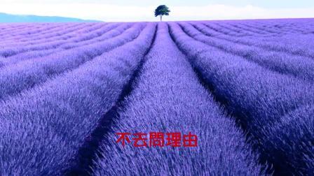 信〡电视原声MV版(1983日本电视剧《阿信》香港无线粤语版主题曲)_林敏怡 作曲;翁倩玉 演唱