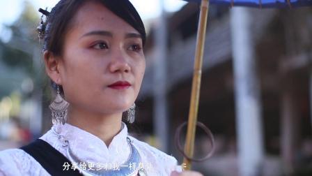 西双版纳州勐腊县易武镇孔雀谷田园综合体宣传片
