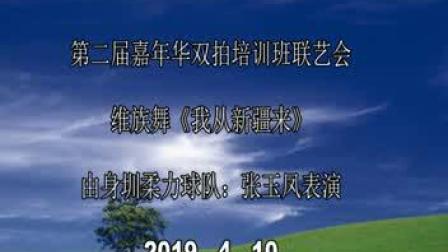 舞蹈:第二届嘉年华双拍双球裁判员教练员培训班表演深圳张玉凤表演《我从新疆来》
