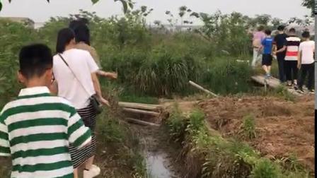 2018.5.1贤辉家摘桑葚