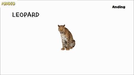 大猫图片游戏