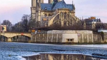 巴黎圣母院大火,玫瑰花窗没了。文明多么脆弱,多么不堪一击。而人类对于历史进程只能逆来顺受。