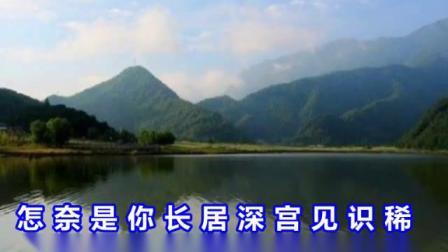 豫剧《唐宫娇女》选段:怎见得谁是凤凰谁是鸡  视频伴奏制作:菏航