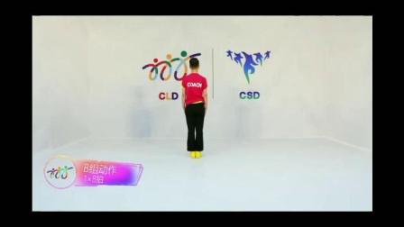 《我爱你中国》排舞 舞步示范