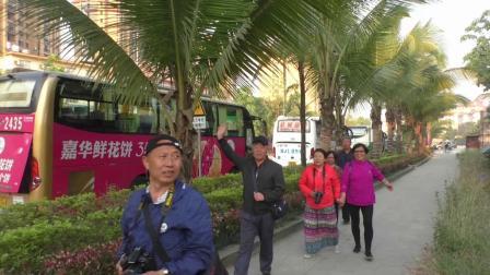 2019年3月平泉市21人团云南行——游西双版纳独树成林。傣家村寨等景区