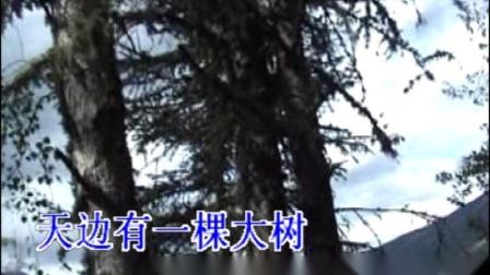 天边-翻唱-降央-2019-4-27