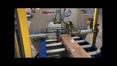FV系列水平式裹膜机 适用于扁平长条物打包