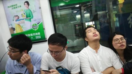 深圳地铁11号线紫红酸葡萄从红树湾南到南山