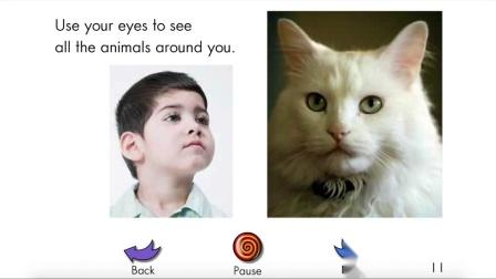 Animal Eyes - RAZ level-G