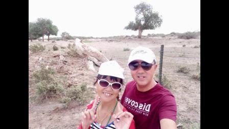 老夫妻自驾游-阿拉善沙漠-额济纳旗