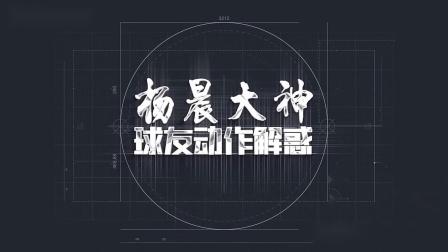 杨晨大神羽毛球解惑21