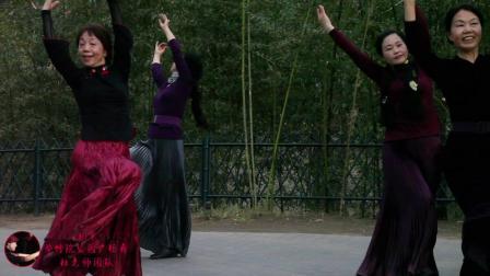 广场舞《梁祝》北京紫竹院公园杜老师团队表演2019年4月份