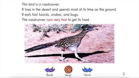 Birds - RAZ level-I