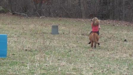 骑小马美女骑马