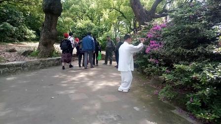 惠山古镇景区打了一套48式太极拳