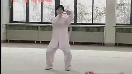 陈式太极拳老架一路胡春申演示