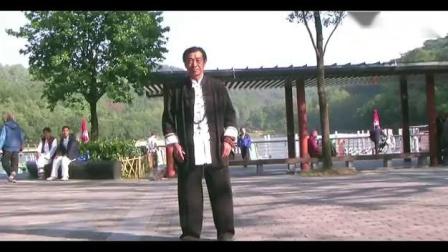 刘想英演练陈家沟小架太极