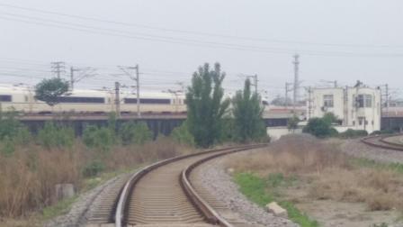 高铁G1810 上海虹桥-焦作 CRH380BL