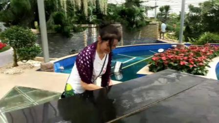 上海鲜花港生态园感受原生态美