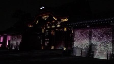 二条城夜樱