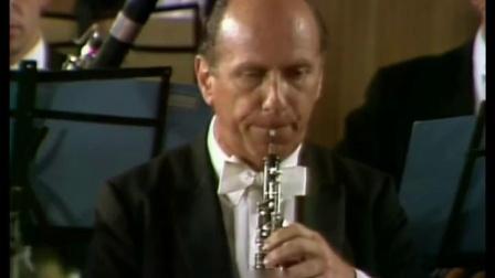 Brahms_-_Symphony_No__1_(Bernstein)-_高清