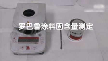 罗巴鲁涂料固含量测定去水印