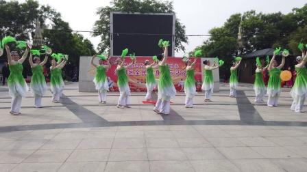 广场舞:洲堤杨柳