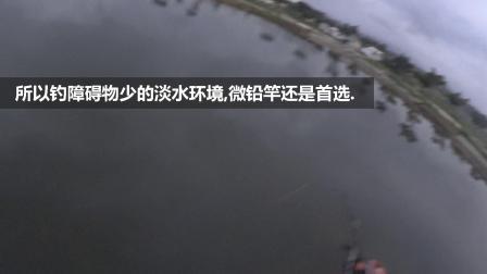 桥筏-大战良西绿野仙踪淡水白鲳
