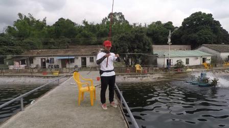 广东东莞海钓场大河奔流超级响尾蛇VIB路亚石斑海鲈20190423阿芬来路亚VLOG