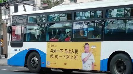 上海公交 浦东上南 871路 W0A-178,572路 S2F-066