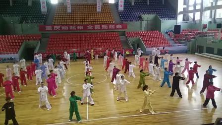 传统杨式太极拳28式:扎西弟子李海水老师拳架