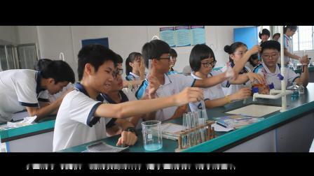 遂城第一初级中学师生教学活动风采展