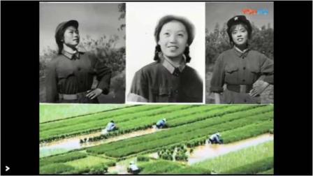 云南生产三师十团二营一连知青相册(2019版)