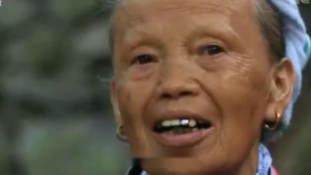 布努瑶-广西大化本土原创 覃万岳壮语